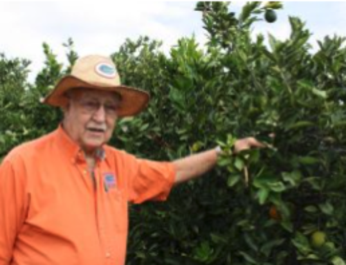 2018 Inductees Chosen for Florida Citrus Hall of Fame